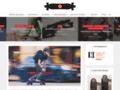 Voir la fiche détaillée : Guide d'achat de skateboard électrique