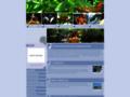 TI Evasion - Le kayak de mer en Guadeloupe