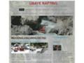 Voir la fiche détaillée : Ubaye Rafting sorties raft canoé kayak paddle dans les Alpes-de-Haute-Provence