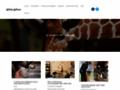 Voir la fiche détaillée : Blog informatif sur les animaux de compagnie