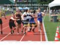 Details : United States Corporate Athletics Association