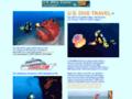 Details : U.S. Dive Travel