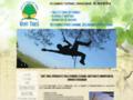 Détails : Vert-Tiges - Taille et Soins des Arbres