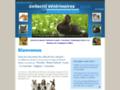 Voir la fiche détaillée : Urgences Vétérinaire