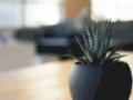 Détails : Solutions multimédia pour l'immobilier
