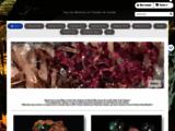 1001 minéraux : Vente bijoux minéraux et fossiles, boutique de minéraux bruts et à cristaux