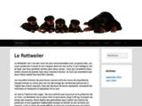1rottweiler, tout sur le rottweiler