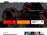 Actu Chien : Informations sur les chiens et chiots
