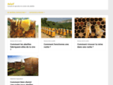 Tout sur l'apiculture avec Adaif