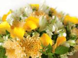 Adriane M Fleuriste Paris - Livraisons de fleurs Paris et Ile de France - 01 42 22 22 46