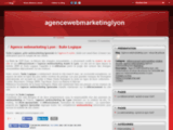 Agence webmarketing Lyon : revue de presse