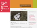 Education canine, garde, promenade. Chien, chat, NAC. Paris et IDF