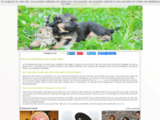 Animalialoisirspro - Grossiste en articles animaliers, chiens et chats
