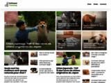 Animaux passion - La référence pour nos animaux de compagnie