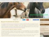 AnimauxTempo le meilleur des blogs sur les animaux