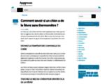 Appgroves : site d'informations, d'actualités et de tribunes