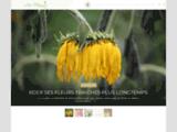 Art floral - Cours, matériel et tutoriel d'art floral en ligne