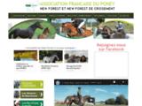 Association Française Poney New-Forest