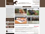 Assurance chevaux / Courtage chevaux
