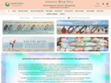 Axstore Market :  Bijouterie en ligne