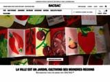 Carré de potager facile, durable et grand pots de fleurs design - Bacsac