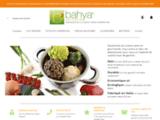 Boutique d'ustensiles de cuisson douce à basse température pour une cuisine saine écologique