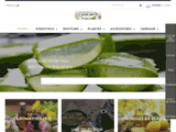 Bernard Laget aromathérapie huiles essentielles cosmétiques naturels et bio en direct de Provence