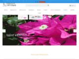 Fabricant de bijoux - Créateur designer de bijoux antillais, vente en ligne