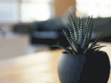 Bois Liquide - le meilleur du bois composite pour vos aménagements extérieurs