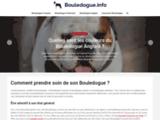 Bouledogue.info