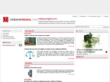Cadeauxoriginal.com : Site internet d'idées de cadeaux  et idées originales