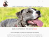 Educateur canin Seine maritime -Comportementaliste-gardes d'animaux