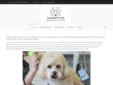 CANI GATTI - Toilettage canin à domicile