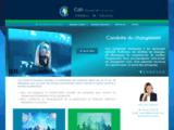 CDS-Conseil : Créateur de Solutions