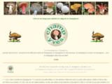 Champignons sauvages, des bois : le portail du champignon.