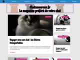 Chatmoureux.fr : Gps Pour Chat - Chatiere Electronique - Arbre à chat