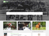 Trouvez votre cheval et son écurie - Cheval Référence
