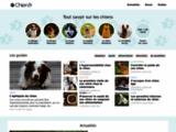 Chien.fr : le guide dédié aux chiens