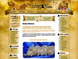 Élevage de Golden Retrievers : le Domaine of Sim