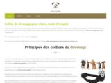 Guide d'achat et comparatif pour collier de dressage