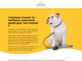 Tout savoir sur les mutuelles de santé pour animaux de compagnie