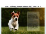 Dressage chien : éducateur canin à Bordeaux et comportementaliste (Pessac & Sa