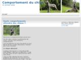 Blog de conseils en éducation canine