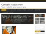 Assurances : conseils et informations pratiques