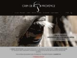 Crin de Provence : bijoux en crin de cheval sur-mesure