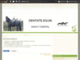Dentiste équin Cantal Angot -  centre equestre ,particuliers...