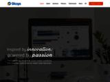DICSYS - Développement Informatique Conseil et Systèmes