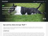 Dieselbulls.com