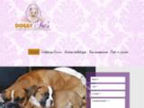 Toilettage chien Frameries