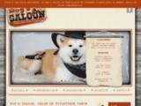 Salon de toilettage animal Valenciennes (59)